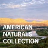 Американская коллекция